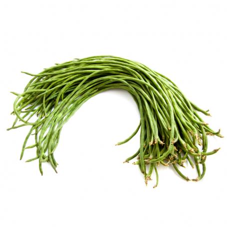 Haricot vert long (kousenband)